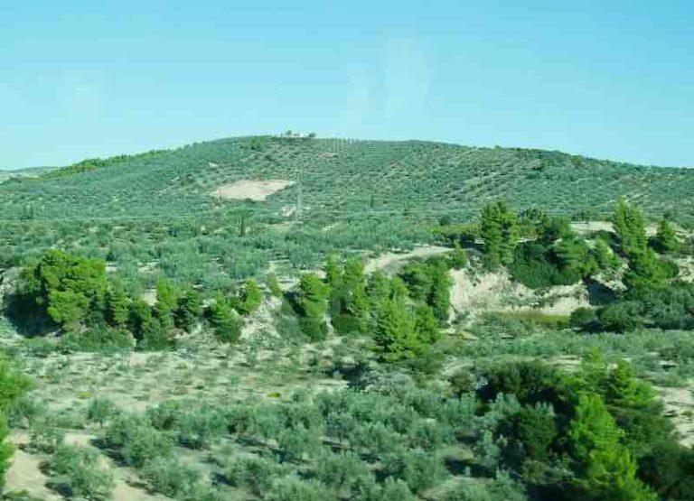Paulus und der Protest in Korinth – der Schleier auf dem Herzen