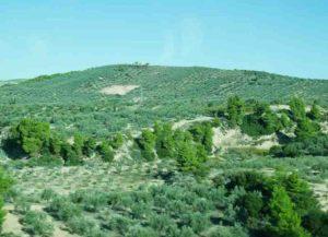 Paul et la contestation à Corinthe – le voile sur le coeur
